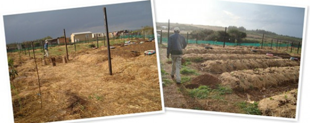 Langbos Food Garden News