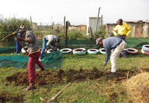 Langbos Garden Beginnings